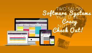2 Salon Software Systems You'd be Crazy to Ignore